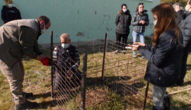 Kırklareli Belediyesi de Artık Bir Karınca Yuvasına Ev Sahipliği Yapıyor