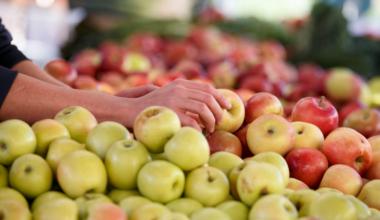 16 Ekim Dünya Gıda Günü Tek Yol: Gıdamıza Sahip Çıkmak